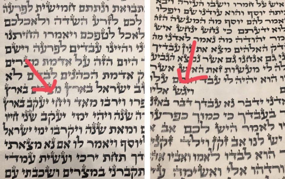 parashah-spacing-vayechi